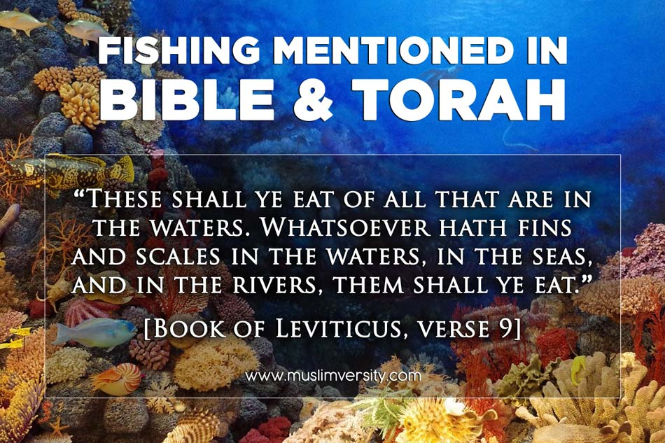 Fishing mentioned in Bible and Torah